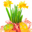 Easter eggs and spring yellow narcissus (daffodil) — Stock Photo