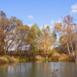 Autumn day on the bank of lake — Stock Photo