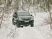 The off-road car in winter wood — Stock Photo