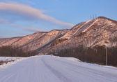 Morning on taiga highway — Стоковое фото
