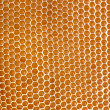 Honeycomb background — Stok fotoğraf