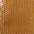 Honeycomb background — Stock Photo #9244848