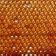 Honeycomb background — Stock Photo #9244922