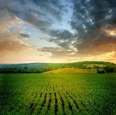 Piękny krajobraz — Zdjęcie stockowe
