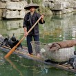 Stock Photo: Chinese cormorant fisherman