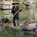 Chinese cormorant fisherman — Stock Photo