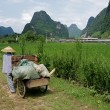 Rural Chinese farmer — Stock Photo