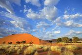 草、 沙丘和天空 — 图库照片