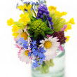 Spring flowers — Stock Photo #9656969