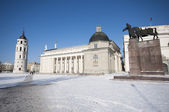 Cathedral Square in Vilnius, Lithuania — Stock Photo