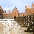 Castle in Trakai, Lithuania — Stock Photo