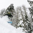 Snowboarder on fresh deep snow - Stock fotografie