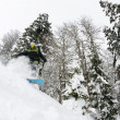 Snowboarder on fresh deep snow - Stockfoto