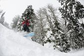 Snowboarder on fresh deep snow — Stock Photo