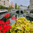 Ljubljana capital of slovenia — Stock Photo