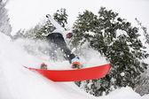 Snowboarder on fresh deep snow — Stock Photo