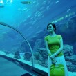 Young woman with big aquarium in backgrond — ストック写真