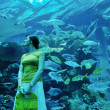 Young woman with big aquarium in backgrond — Stock Photo