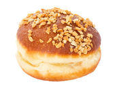 Doughnut berliner — Stock Photo