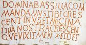 Latin writing background — Стоковое фото