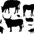 Isolated farm animals silhouettes collection — Stock Vector #8543819