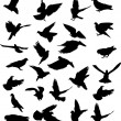 Twenty six pigeon black silhouettes — Stock Vector #8544114