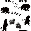 Seven bears and tracks isolated on white — Stock Vector