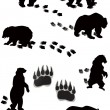 Seven bears and tracks isolated on white - Imagen vectorial