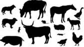 Isolated farm animals silhouettes collection — Stock Vector