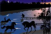Paarden in rivier bij nacht — Stockvector