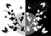 Cherry flowers and butterflies silhouette on white and black — Stock Vector
