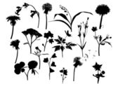 Wild flowers silhouettes collection — Stock Vector