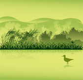 Bird in lake near forest — Stock Vector