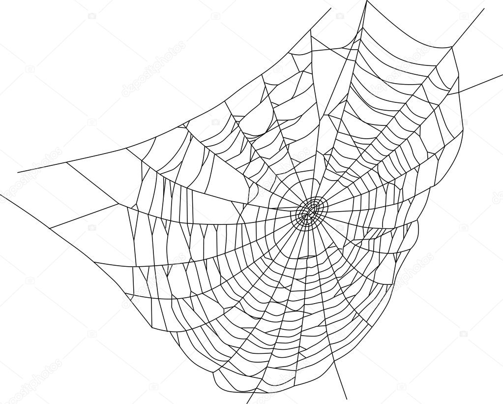 Spider Web Silhouette Illustration Stock Vector Dr Pas
