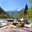Red wine, cheese and grapes served at a picnic. Verzasca valley, — ストック写真