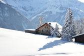 Braunwald, famoso suizo de esquí — Foto de Stock