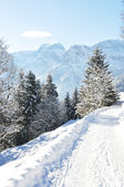 Braunwald, famous Swiss skiing resort — Foto Stock