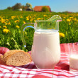 Jug of milk and bread on the spring meadow. Emmental region, Swi — Stock Photo #8300006