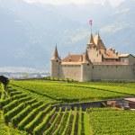 Chateau d'Aigle, Switzerland — Stock Photo #8300287