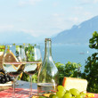 Royalty-Free Stock Photo: Wine and grapes against Geneva lake. Lavaux region, Switzerland