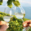 Royalty-Free Stock Photo: Two hands holding wineglasses against Geneva lake. Lavaux region