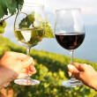 Two hands holding wineglasses against Geneva lake. Lavaux region — Stock Photo