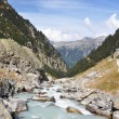 Stock Photo: Mointain river in Berner Oberland region of Switzerland