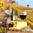 Wine, grapes and cheese against vineyards in Lavaux region, Swit — Stock Photo #8300545