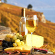 Wine, grapes and chesse on the terrace vineyard in Lavaux region - Stock Photo