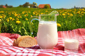 Jug of milk and bread on the spring meadow. Emmental region, Swi — 图库照片