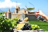 Druiven, wijn en kaas tegen oude kasteel onder wijngaarden — Stockfoto