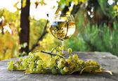 Wineglass and bunch of grapes. Lavaux region, Switzerland — Stock Photo