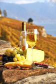Wine, grapes and chesse on the terrace vineyard in Lavaux region — Stock Photo