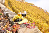 Wine and grapes on the terrace of vineyard in Lavaux region, Swi — Stock Photo
